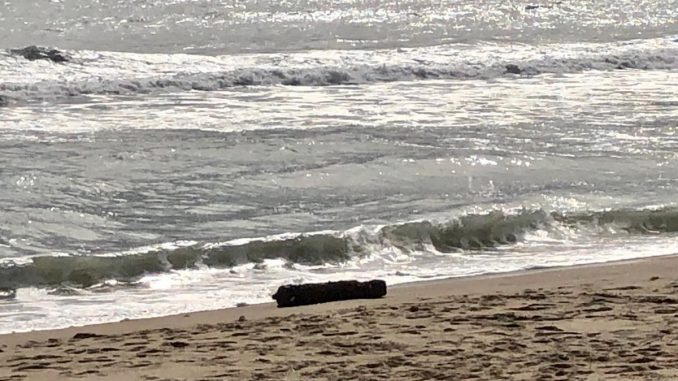 Navy Bomb Squad Called In After Potential Unexploded Ordnance Found On Outer Banks Beach Beach 104